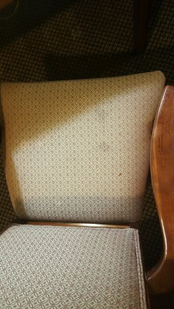 La Porte, TX: Arm chair stains