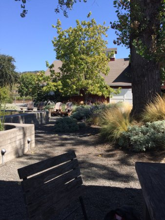 Rutherford, Kaliforniya: Frog's Leap Winery
