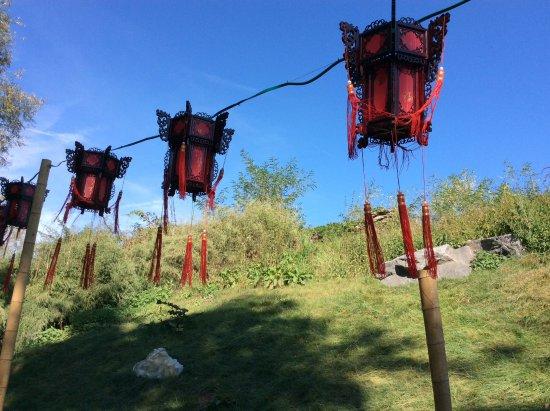 Brugelette, Bélgica: Les lampions