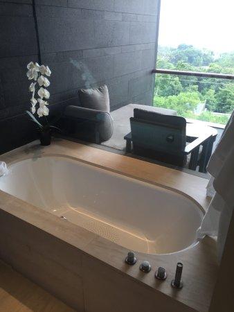 Capella Singapore : Bathroom