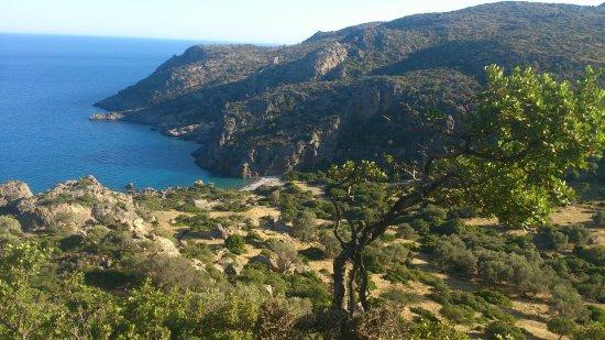 Sougia, Hellas: DSC_0165_large.jpg