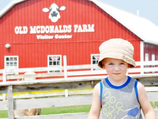 Visit Old McDonald's Farm in Sackets Harbor