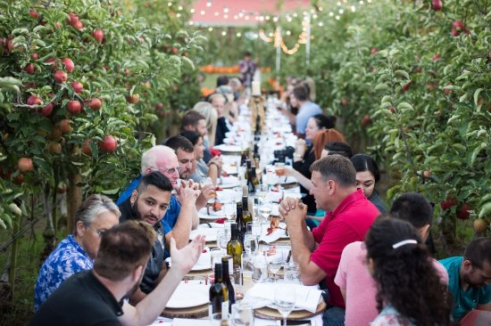 Abbotsford, Canada: Long Table Harvest Dinner at Taves Family Farm