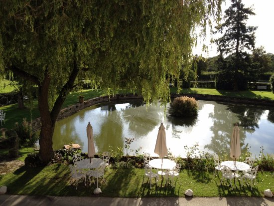 Corse Lawn, UK: Front pond where a coach with four horses could be washed.