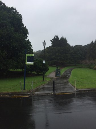 Auckland Domain : There allot of great natural life to see and enjoy