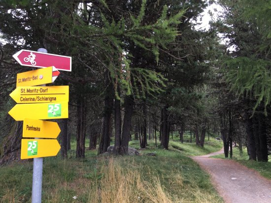 Hauser Hotel St Moritz Hiking Is Easy Here There Are Yellow Signs Everywhere