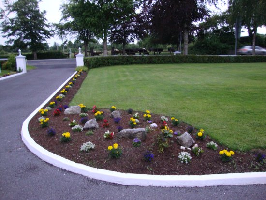 Newcastle West, Irlandia: Summer Bedding Plants just put in front entrance.