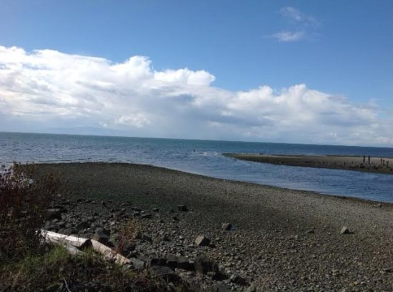 Roberts Creek, Канада: Tide was out and while we ate several men waded into the water to fish.