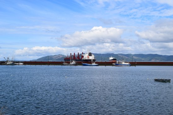 The Coffee Girl: Container ships can be seen from the dock