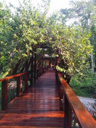 Posada Amazonas: IMG_20160920_1531079_large.jpg