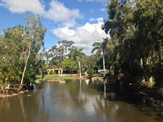 Barcaldine, Australien: photo6.jpg