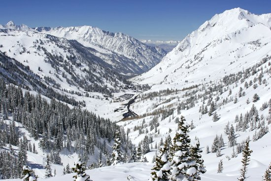 Things To Do in Snowbird Ski and Summer Resort, Restaurants in Snowbird Ski and Summer Resort