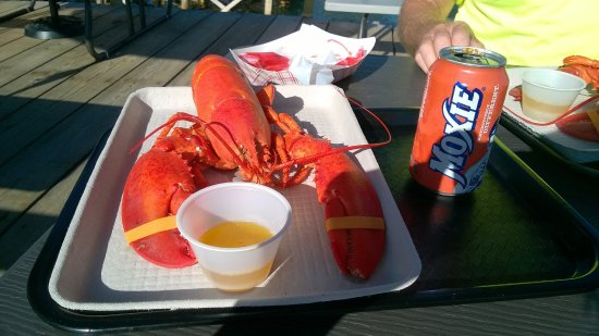 Corea, ME: Lobster and a Moxie (it's a Maine thing)