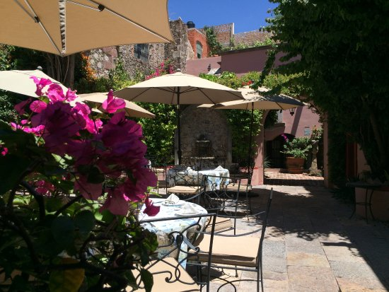 Casa Rosada Hotel: Lovely courtyard for dining