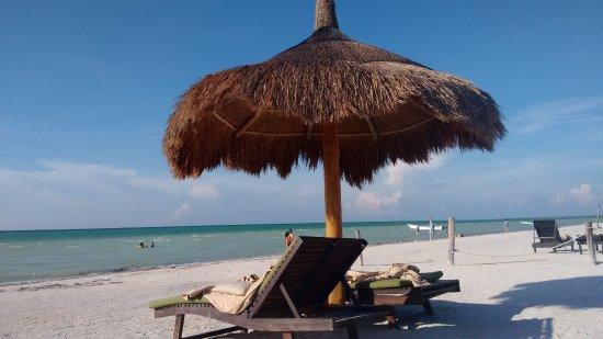 Hostel & Cabanas Ida y Vuelta Camping: el paraiso, foto real :) yo la tome