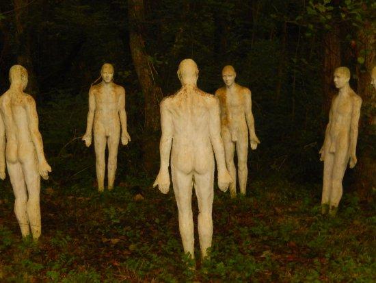 Muddiford, UK: I feel a bit overdressed