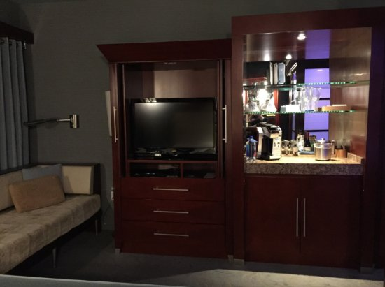 Shade Hotel: TV and mini bar