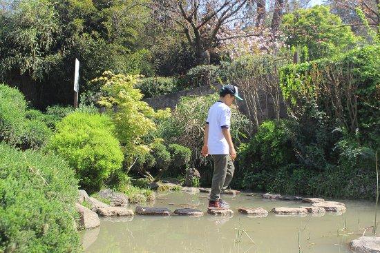Fuente De Agua Y Camino De Piedras Picture Of Jardin Japones - Fuentes-agua-jardin