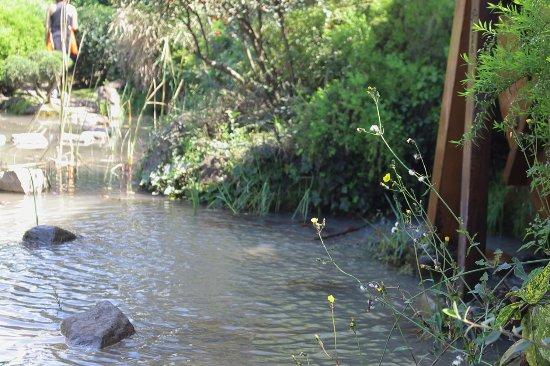 Fuente De Agua Picture Of Jardin Japones Santiago Tripadvisor - Fuentes-agua-jardin