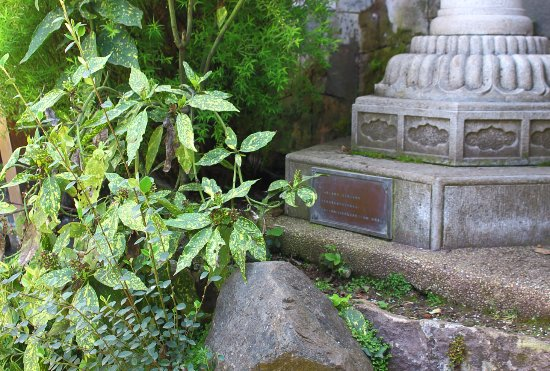Foto de jardin japones santiago great view of santiago for Jardin japones de santiago