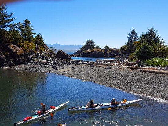 Gold River, แคนาดา: Kayakers in Friendly Cove