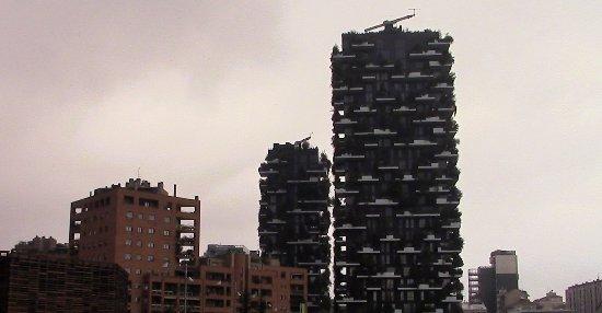 Un Giardino Per Ogni Appartamento Foto Di Bosco Verticale Milano