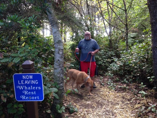 Whalers Rest RV & Camping Resort : Trail to the Beach