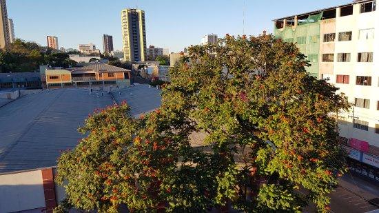هوتل سان رفائيل: Foto desde el cuarto piso.-