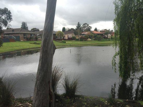 Rowville, أستراليا: photo6.jpg