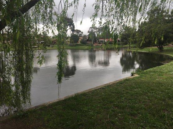 Rowville, أستراليا: photo8.jpg