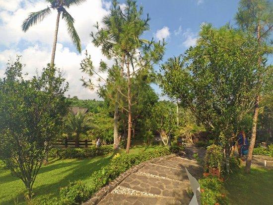 Cintai Corito's Garden Photo