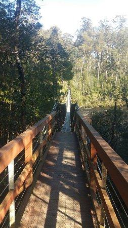 Geeveston, Australia: Tahune Airwalk & Swinging Bridges