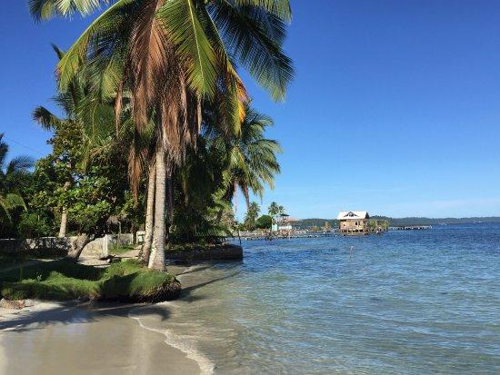 Carenero Island, Panamá: Kevin Condos