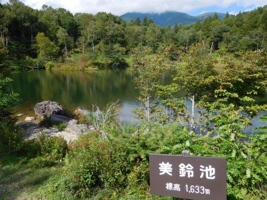 Minamimaki-mura Foto