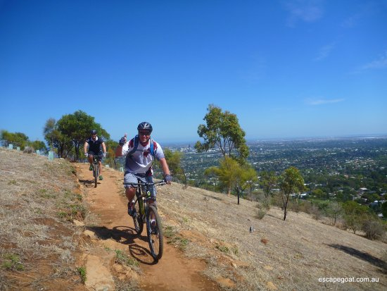 Escapegoat Bike - Day Tours: Awesome views and trails above adelaide