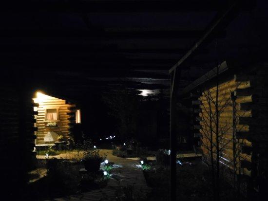 EarthSong Lodge - Denali's Natural Retreat: Moon