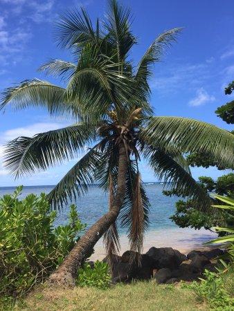 Kauai Photo Tours照片