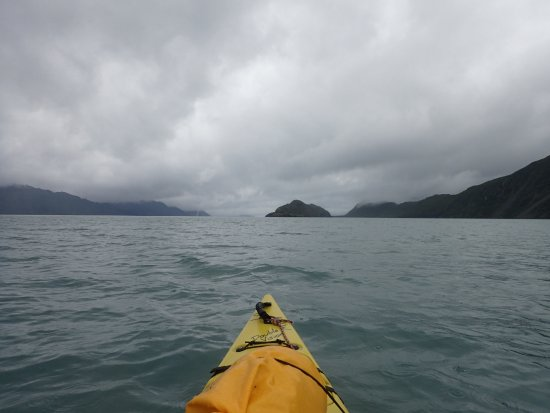 Kayak Adventures Worldwide - Day Trips: kayaking back