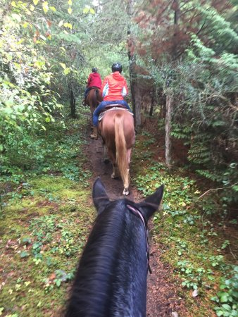 Nanoose Bay, Kanada: Paradise Acres Ranch