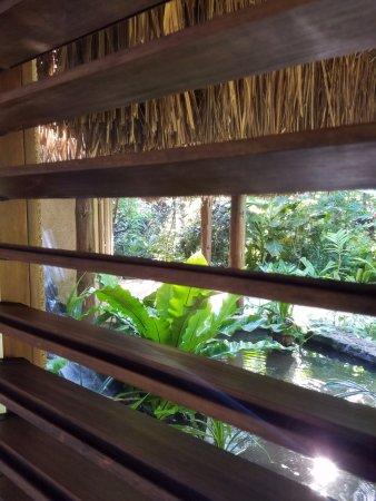 Savasi Island Villas: Screens