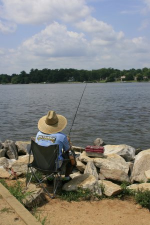 Jonas green state park annapolis aktuelle 2018 lohnt for Fishing spots in maryland