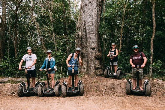 Storms River, Güney Afrika: Segway fun i the forest