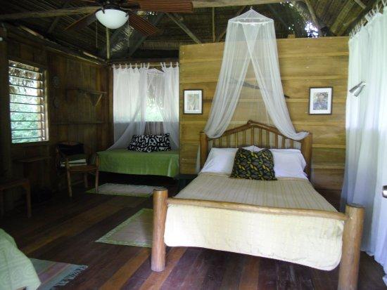 Punta Gorda, Belize : Casita