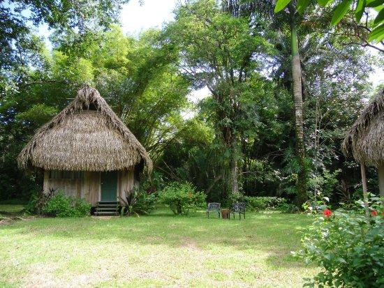 Punta Gorda, Belize : Casita exterior