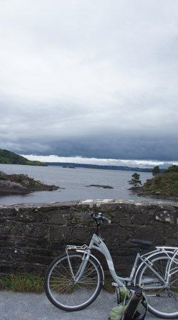 Lyne's Rent A Bike: See Killarney on bike