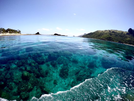 Kuata Island, Φίτζι: beautiful clear water with great coral reef