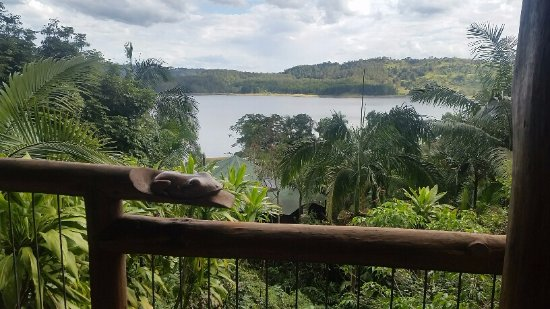 Secrets on the Lake: View from Dragonfly balcony