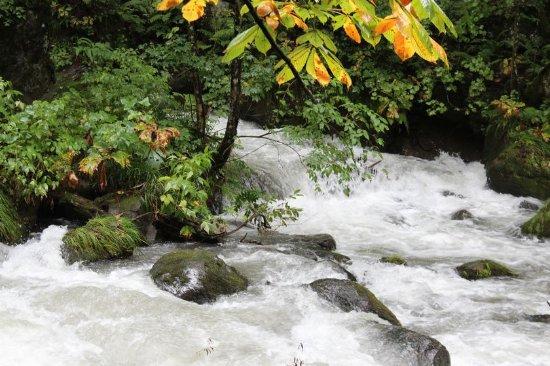 Towada, Japón: ちょっぴり色づいた葉っぱがアクセント。渓流が美しい!