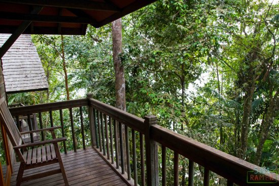 Permai Rainforest Resort: Balcony with Treehouse room