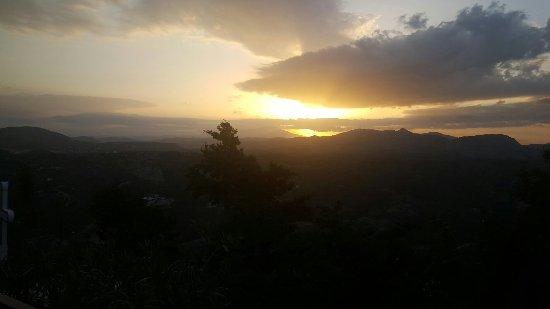 科林比亚照片